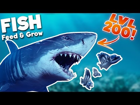 BIGGEST GREAT WHITE SHARK IN THE SEA! LEVEL 200 SHARK!   Feed And Grow Fish Gameplay