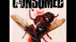 Watch Consumed Butterside Down video
