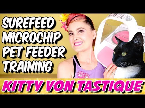 the-surefeed-microchip-pet-feeder-from-sureflap---how-to-use,-training,-tips-&-tricks!