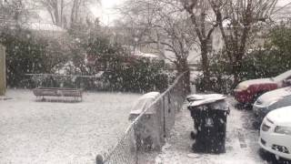 La caida de nieve en Lousville Kentucky USA