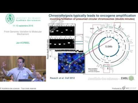 [Conférence] - J. KORBEL - From Genomic Variation to Molecular Mechanism - Académie des sciences