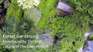 Forest Gardening | Living With The Land | Part 1