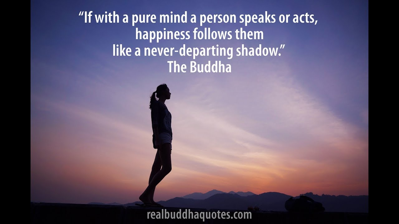 Buddha Quotes About Love Buddha Quotes  Youtube