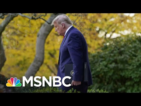 Officials Follow Trump's Lead Dodging All Reporter Questions | The 11th Hour | MSNBC