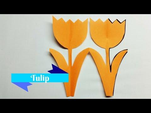 Tulip | Kirigami