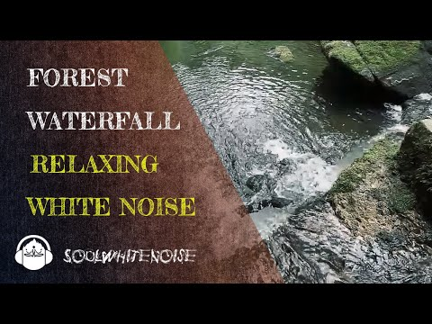 Forest Waterfall Noise To Help You Reach A Deep Relaxation