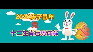 【12生肖2020年運勢運程】2020庚子鼠年十二生肖屬兔的人流年運程預測詳解