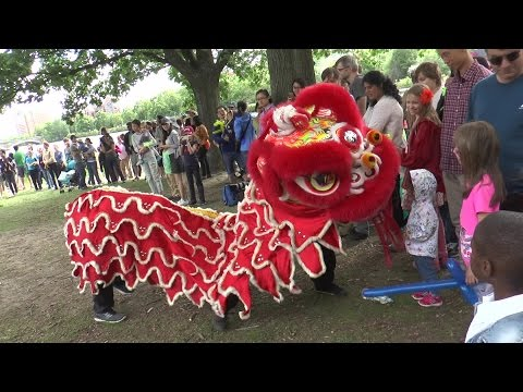 Dragon Boat Festival 2016 - Part 1