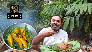 Gambar cover Thekkady Tribal Cooking Video: Tribal Chicken Curry + Tribal Fish Barbeque + Ragi Porridge