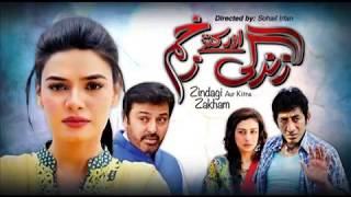 Zindagi Aur Kitne Zakham   EP # 14th   27th April 2016