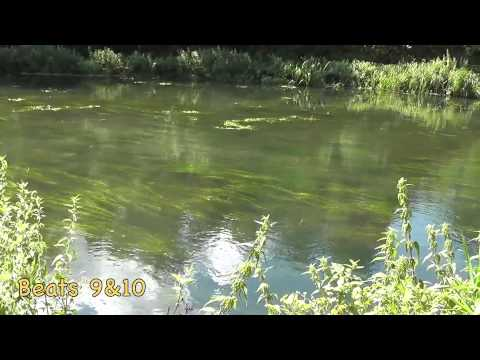 Salisbury And District Angling Club Beats
