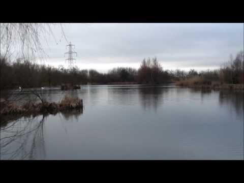 Furzebray Island Lake  A New Campaign