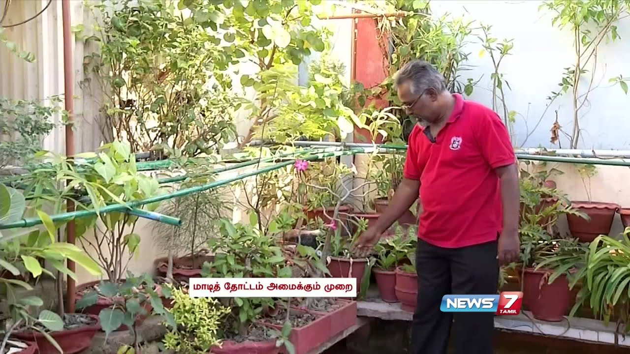 Exceptional Grow And Care For Bonsai Trees In Your Terrace Garden | Poovali | News7  Tamil   YouTube