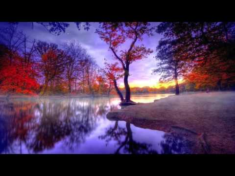 Fall Laptop Wallpaper Red Leaves Of Autumn Eves Chillstep Mix 432 Hz Youtube