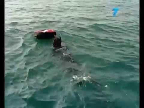 City7 Dubai TV report - Freediving in the UAE