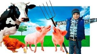 Животные для детей Ферма и домашние животные Farm Animal for kids Видео для детей