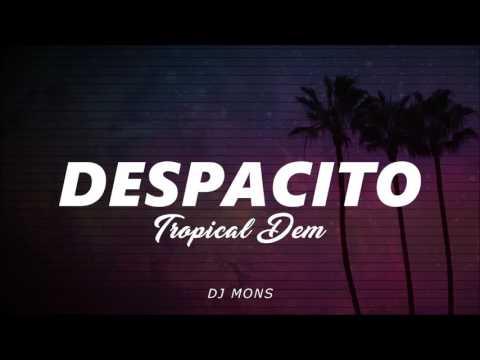 Despascito TropicalDem (DJ MONS)