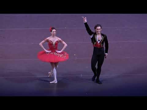 Don Quixote Grand Pas (Ekaterina Krysanova/Ivan Vassiliev)