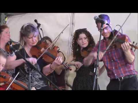 Melbourne Scottish Fiddlers Sneug Water Waltz  Surrey Hills Music Festival 19th November 2016