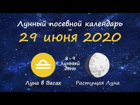[29 июня 2020] Лунный посевной календарь огородника-садовода