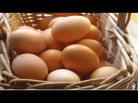 Galinhas Poedeiras - Classificação dos Ovos