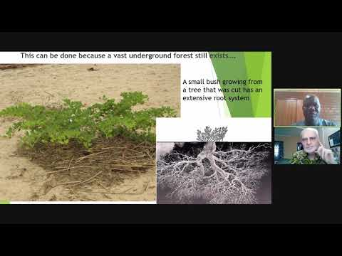 West African Farmer Testimonies: How we are Overcoming the Crisis of Climate Change in the Sahel