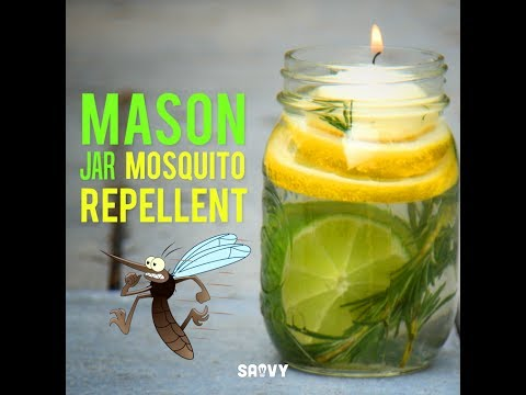 Mason Jar Mosquito Repellent Outdoor Diy Youtube