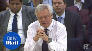 David Davis says they know magnitude of impact Brexit will have - Daily Mail