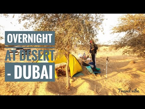 Overnight At Desert | Marmoom Desert Conservation | Dubai