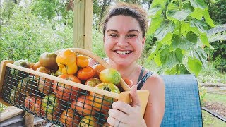 Huge Heirloom Tomato Harvest and Variety Review | Roots and Refuge Farm