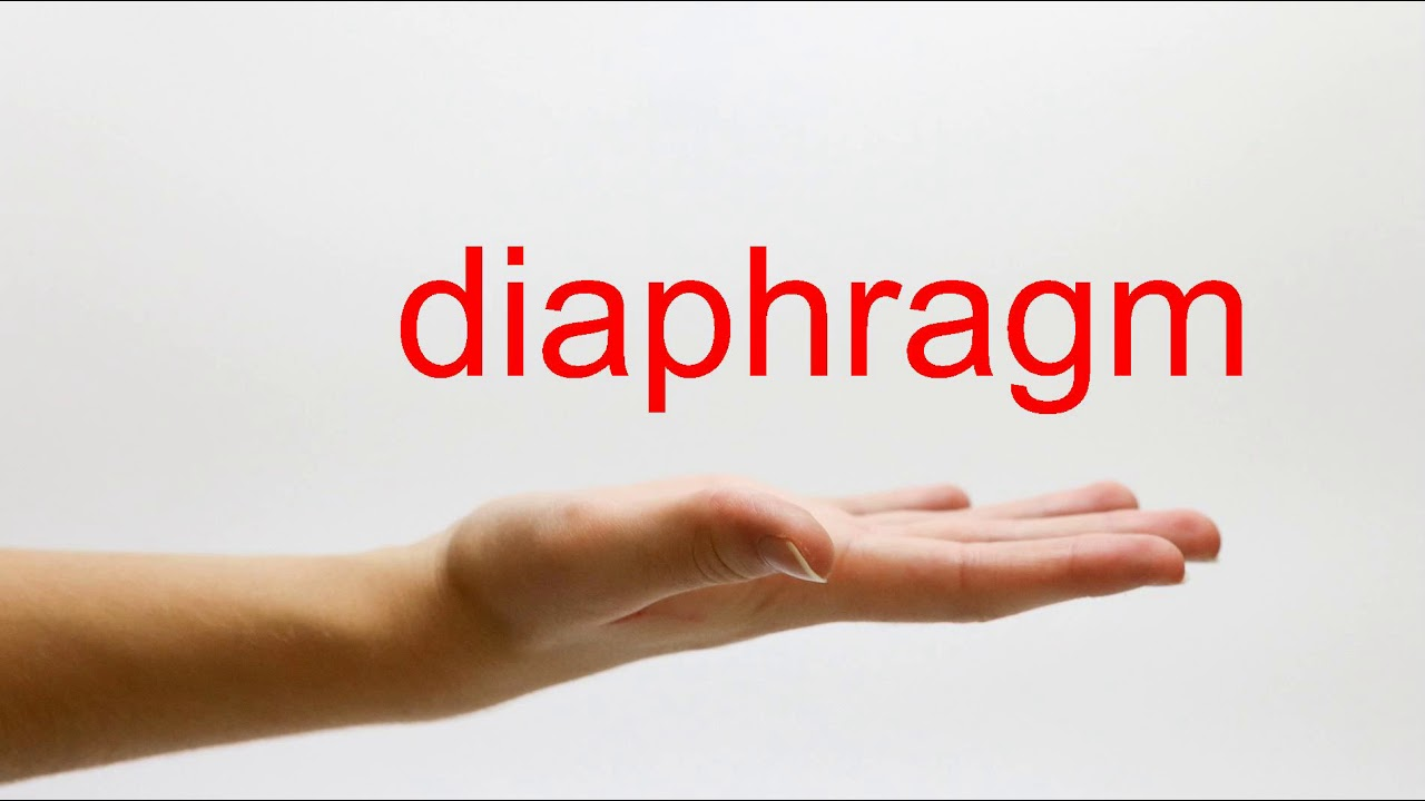 How to Pronounce diaphragm - American English