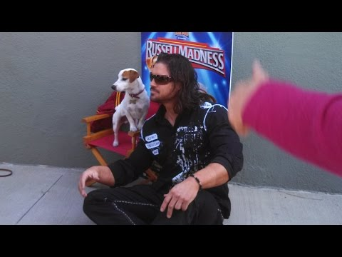 RUSSELL MADNESS with Crystal the Monkey & Brightley the Dog