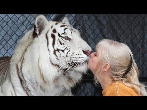 Florida Woman Keeps Bengal Tigers In Her Garden from YouTube · Duration:  2 minutes 56 seconds