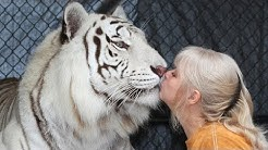 Florida Woman Keeps Bengal Tigers In Her Garden
