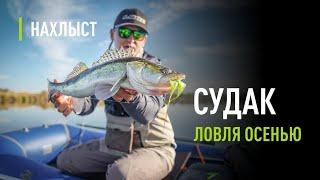 Ловля СУДАКА в Краснодарском крае
