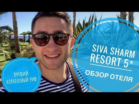Отель с лучшим коралловым рифом - SIVA SHARM 5*