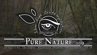 Slow Life Contemplation - Pure Nature n°009 - Saunade
