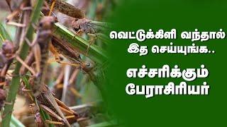 Prof Sultan about locust | Kumudam