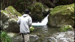 渓流で釣りしてみた