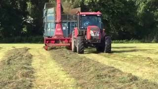 zetor with trailed forage harvester! Shropshire!