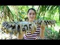 Yummy Razor Clam Hot Spicy Cooking - Razor Calm Stir Fry - Cooking With Sros