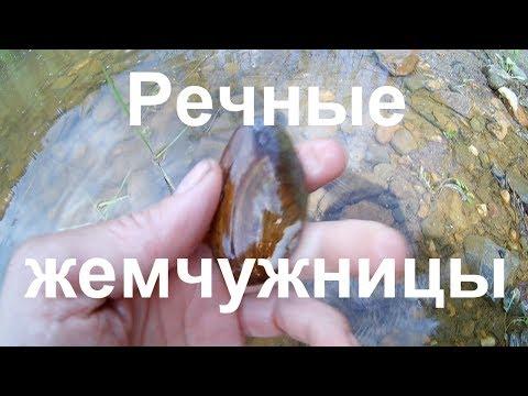 Одиночный сплав по р.  Койва.  Заброшенные кордоны (ч - 2)