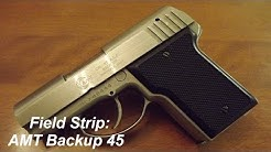 Field Strip: AMT Backup 45