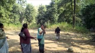 dungarpur mewara forest wmv