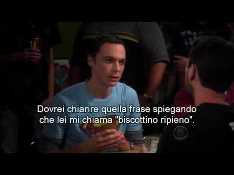 The Big Bang Theory Sheldon Vs Will Wheaton