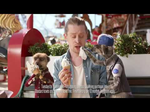Compare The Market - Meerkat Movies Macaulay Culkin