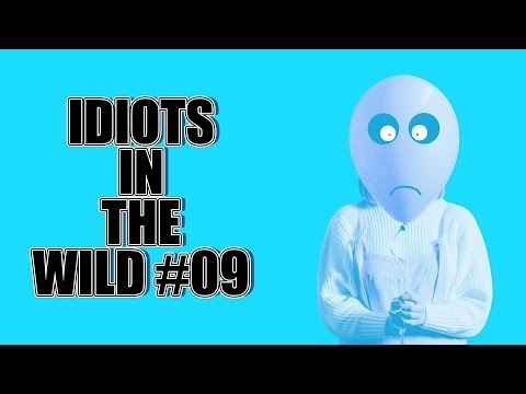 IDIOTS IN THE WILD 9: 5 TRUE STORIES