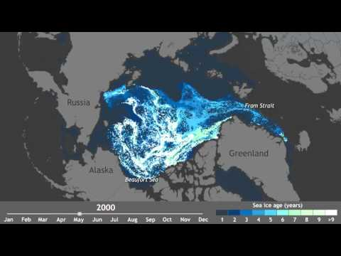 Watch 25 Years Of Arctic Ice Vanish In 1 Minute