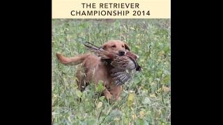 2014 Igl Retriever Championship Held At Windsor