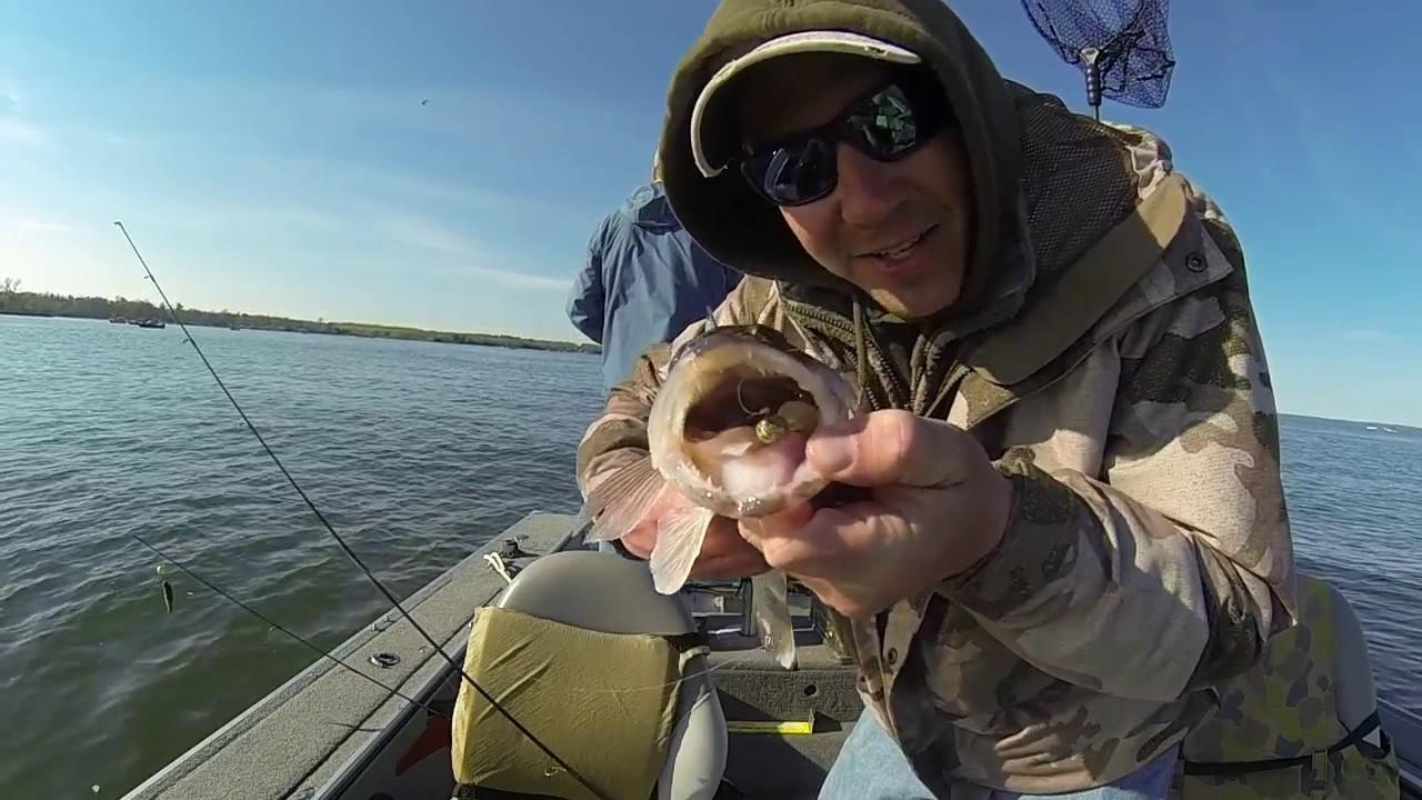 2017 walleye fishing leech lake mn youtube for Minnesota fishing regulations 2017